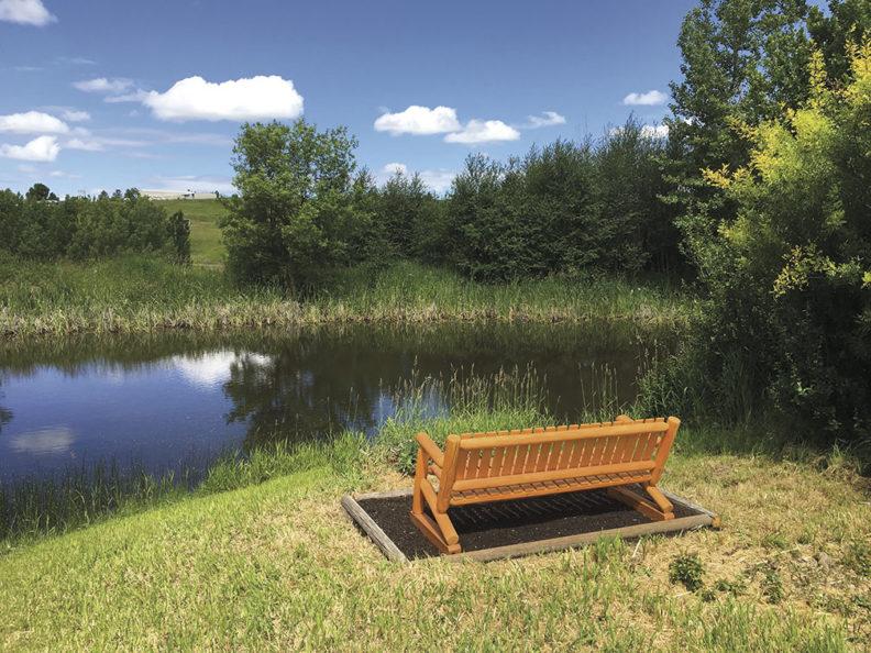 WSU Arboretum wildlife pond