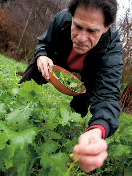 Farm to table pioneer Mark Musick in his kitchen garden