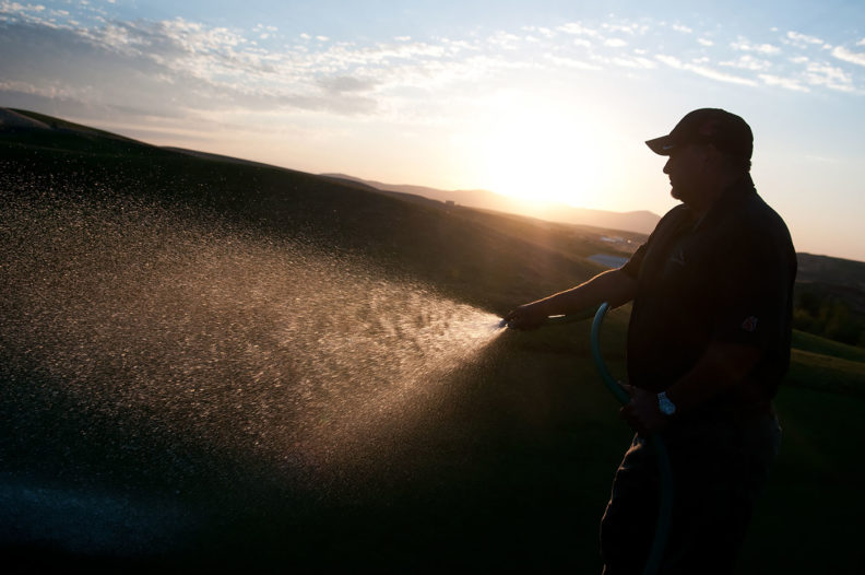 Watering at Palouse Ridge