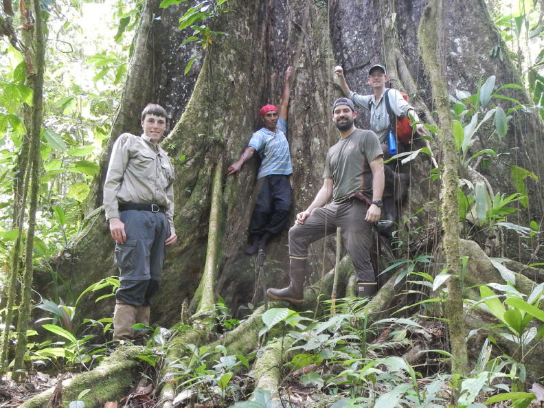 Group of men by large tree in Honduras