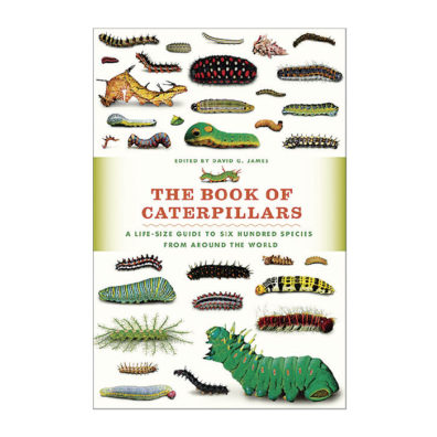 Cover of The Book of Caterpillars