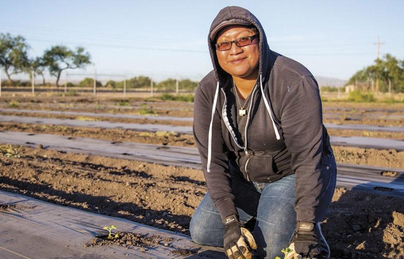 Woman farmer planting