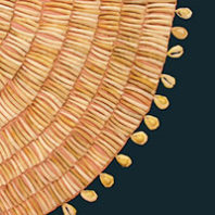 Woman's dentalia cape (Courtesy Plateau Peoples' Web Portal)