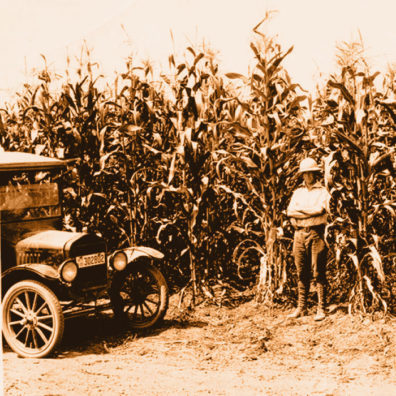 Model T and tall corn at WSU Prosser research station