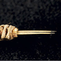 Ancient tattooing instrument