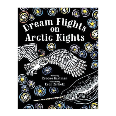 Cover of Dream Flights on Arctic Nights