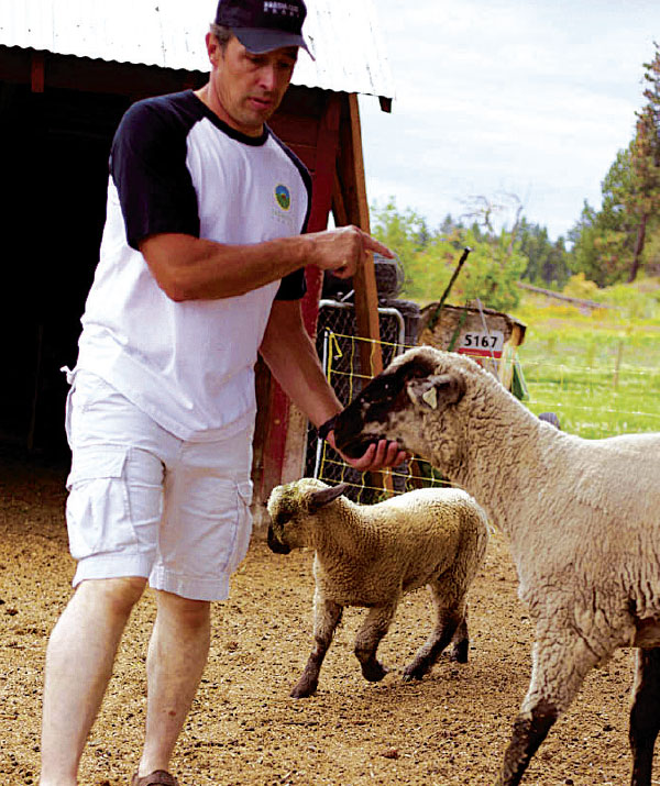 Jim Long with sheep at Fresh Cut Farms