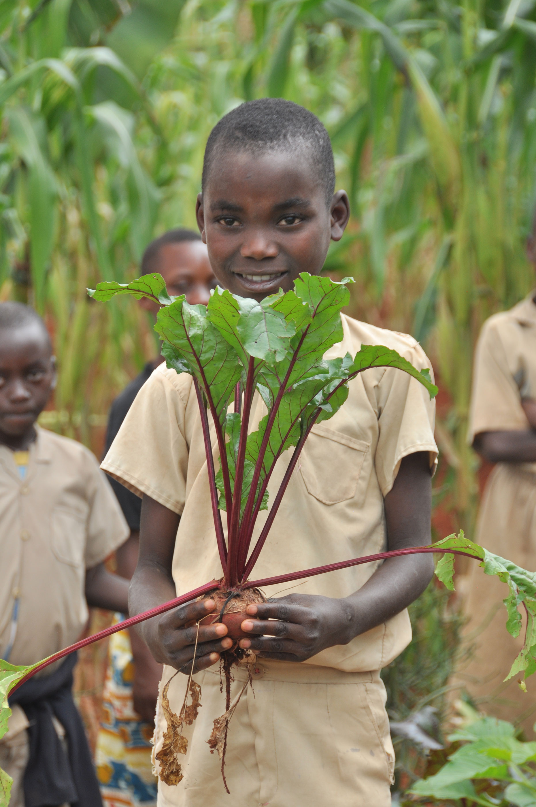 Schoolchildren in the small, war-torn African nation of Burundi are planting gardens and learning other skills, working with Washington State University Extension and 4-H partners