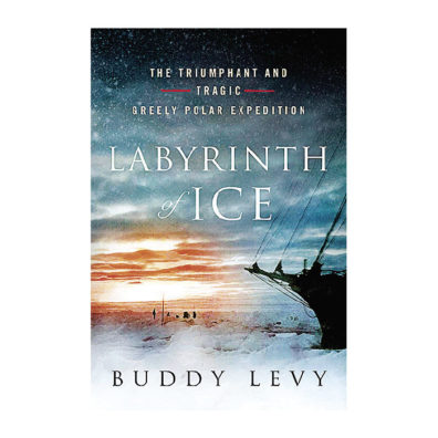 Cover of Labyrinth of Ice