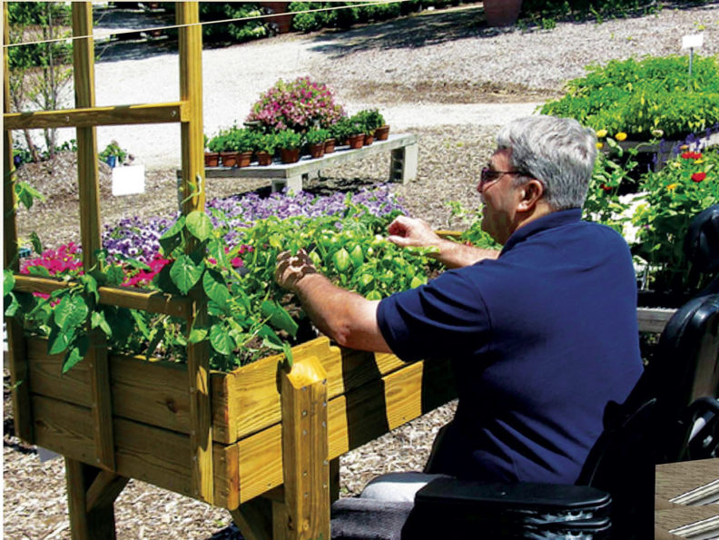 Man in a wheelchair sits at a raised garden bed
