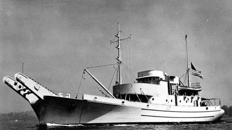 US Navy net tender USS Boxwood