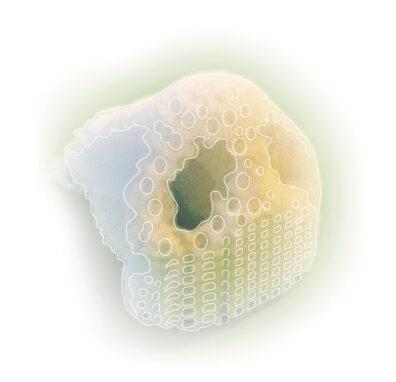 Illustration of 3D-printed skin and cartilage