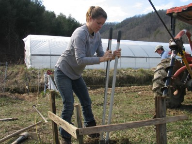 "(Source: Mountain Harvest Organics, 2012, ""Danielle pickaxing the trenches for our french drainage system"")"